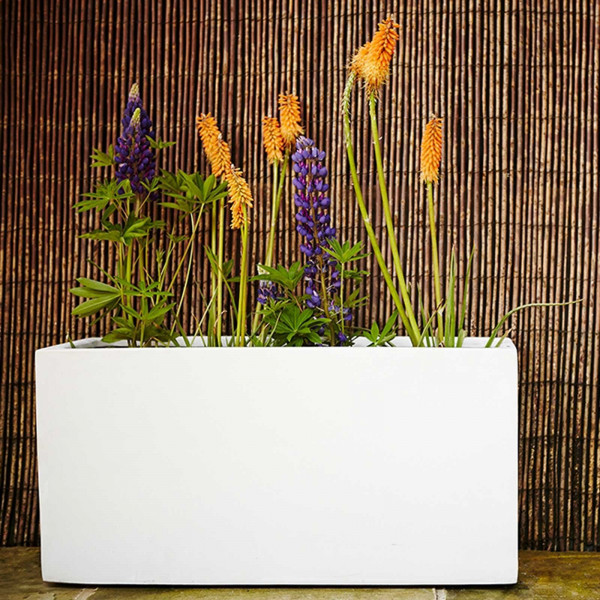 Buy Jumbo Poly Trough Online - Flower Pots & Stands